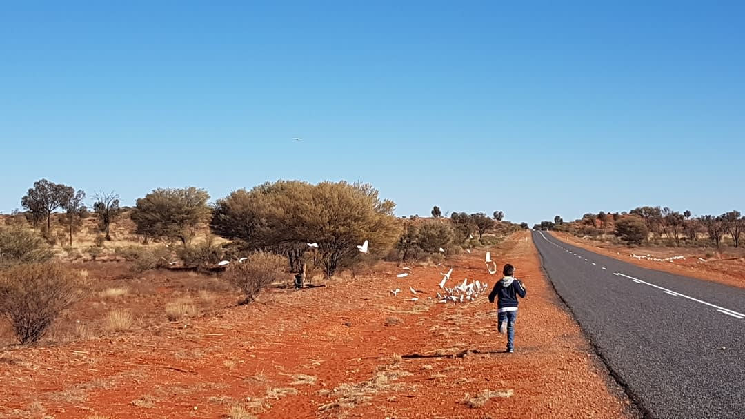 An Indigenous child running in the outback.