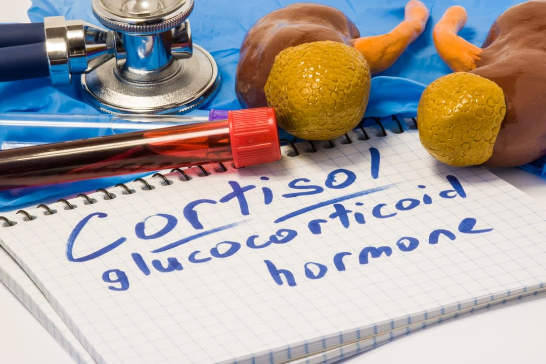 Cortisol glucocorticoid hormone diagnostic
