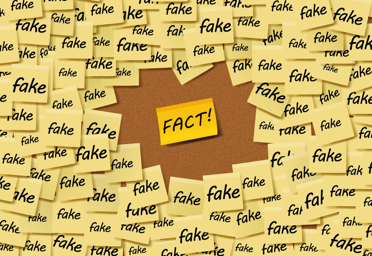 "Many Post-It notes reading ""fake"", surround a solitary note reading ""FACT!"""