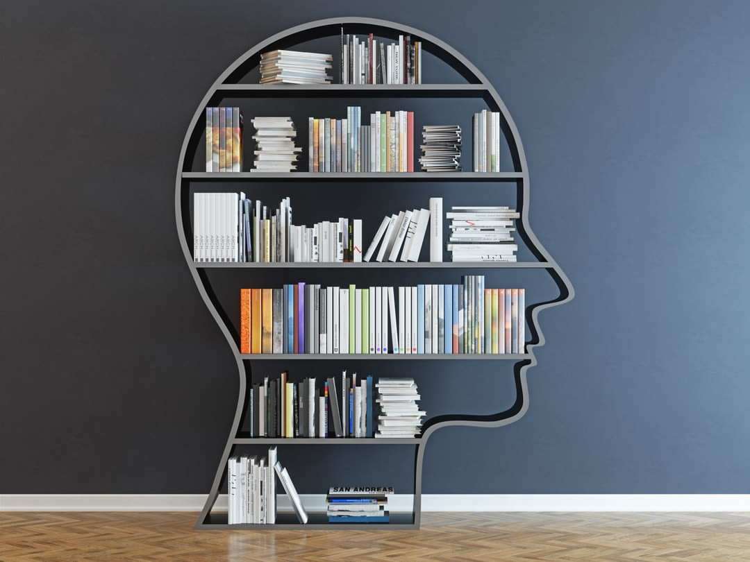 A book shelf in the shape of a person's head, filled with books.