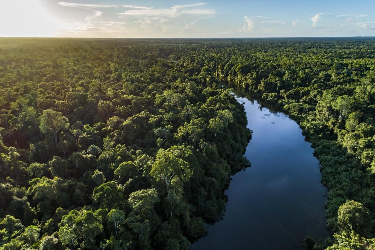The Digul River