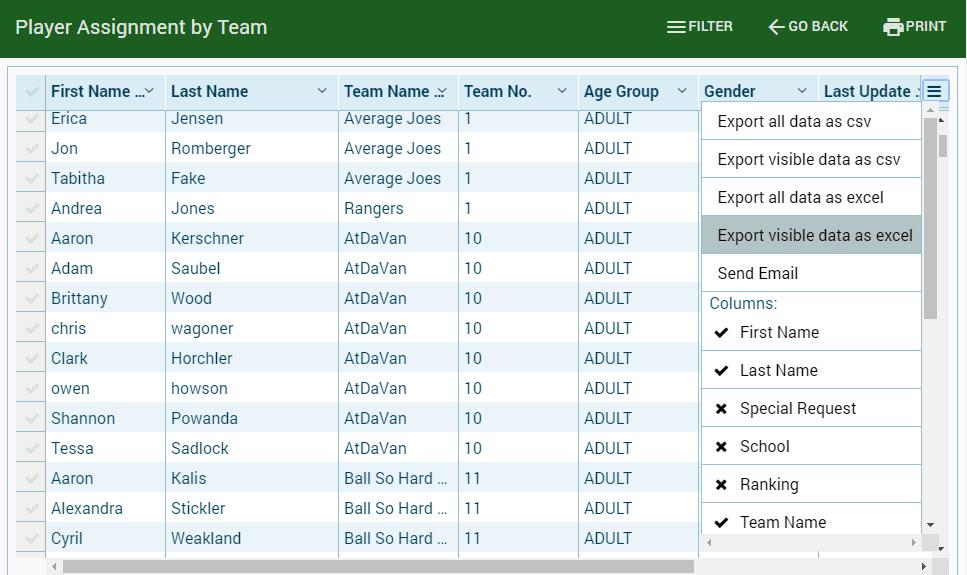 Team report