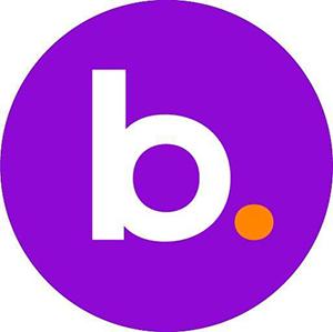 BNS Token logo
