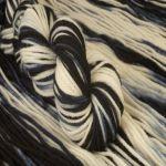 Cadenza – Zebra