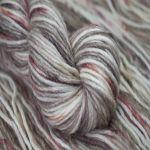 Red Panda – 178 – Toasted Macaroon