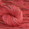 Wigwam - Raspberry