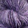 Art - Velvet Bilberry