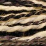 Prism – Zebra