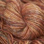 Red Panda – 76 – Lichen