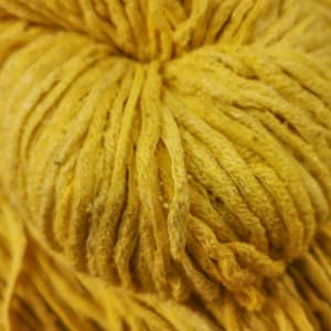 Yume – Dali Sunflower Suzie