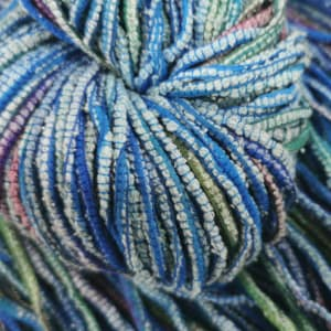 Yume – Blue Parrot