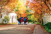 Enjoy Colonial Williamsburg