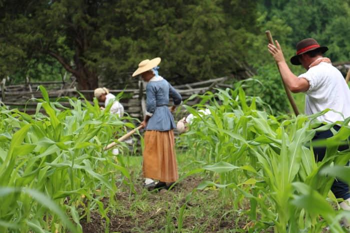 plowing-fields-crops.jpg