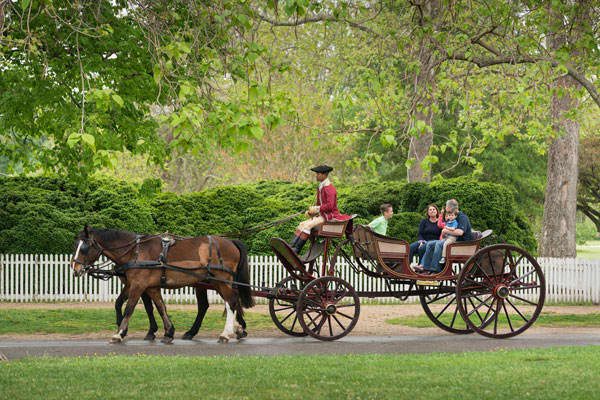 Carriage Rides: Red Carriage