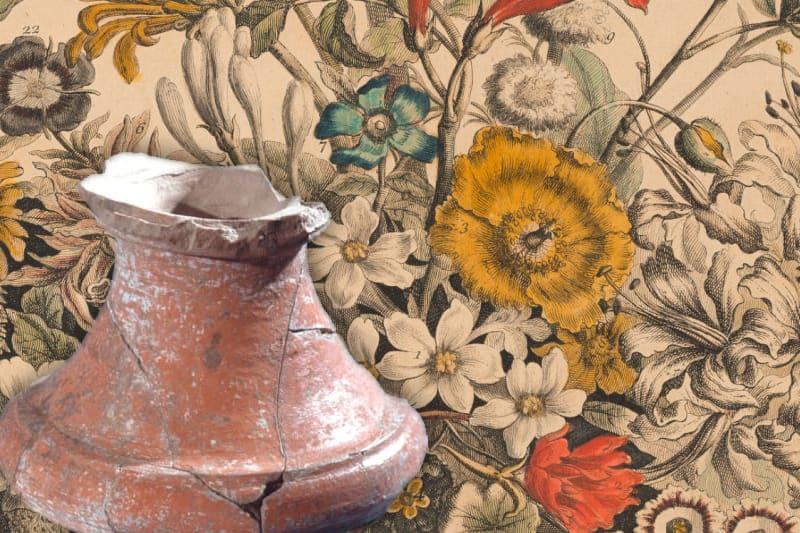 Furber's Flowers