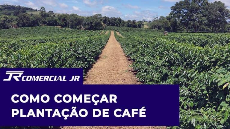 Como Começar Plantação de Café
