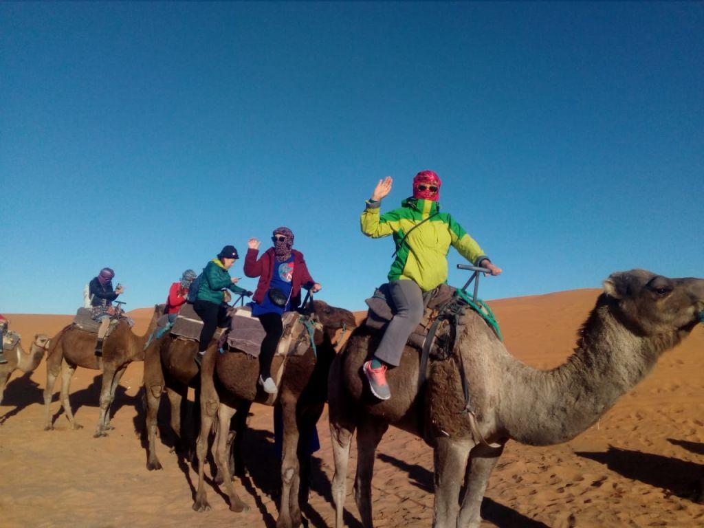 tourist camel trek desert mhamid elghizlan