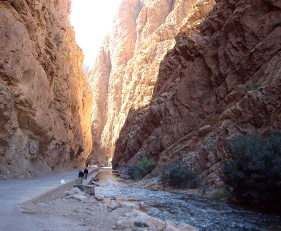 Marrakech desert tour 3 days to fes: Image 12
