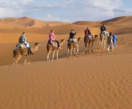 Marrakech desert tour 3 days to fes: Image 13