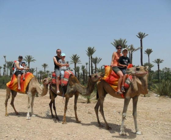 Marrakech desert tour 3 days to fes: Image 11