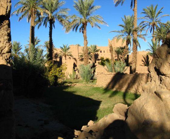 Marrakech desert tour 6 days: Image 7