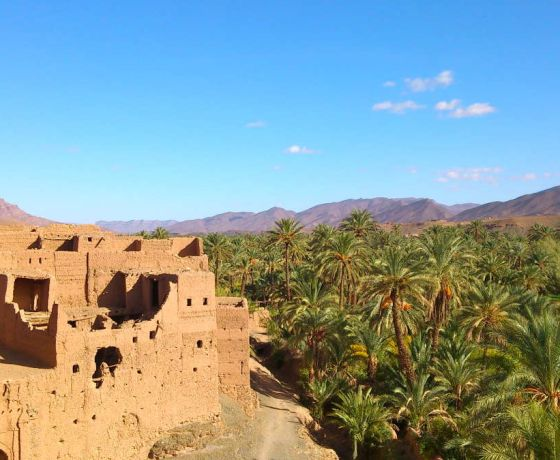 Marrakech desert tour 6 days: Image 9