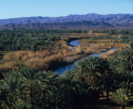 Marrakech desert tour 7 days from fes: Image 15