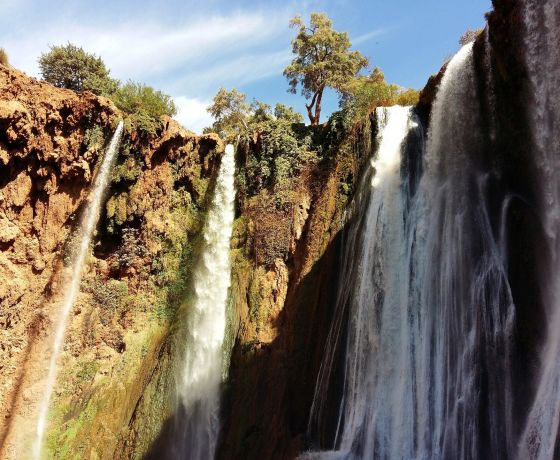 Day trip to the Ouzoud Waterfalls from Marrakech