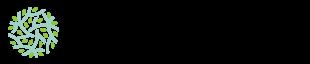 Esprit Céladon - Tableware arts