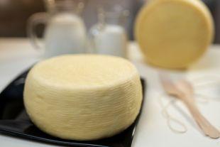 Caciotta - Caciotta fior di bontà est un fromage frais avec des ferments lactiques ajoutés, soumis à une courte période de séchage. Bien qu'il s'agisse d'un fromage à croûte semi-dure, il est crémeux à l'intérieur et a une saveur sucrée / légèrement acide et extrêmement savoureuse. Nous le produisons également en variantes avec du piment et des olives. C'est un excellent produit à déguster seul ou accompagné de pain ou de croûtons, ou en combinaison avec des salades ou des apéritifs.  Notre caciotta a été reconnue comme l'un des meilleurs fromages au monde lors du dernier concours des World Cheese Awards 2018 à Bergen (Norvège) - médaille d'argent.