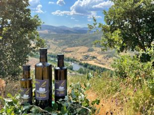 TUA VALLEY - Olive Oil - Extra Virgin Olive Oil Technical information : Absorbance (k232): 2.05 Absorbance (k270): 0.17 Peroxide Index (meqO /Kg): 7.6 Acidity  (%AC. oléique acid): 0.24
