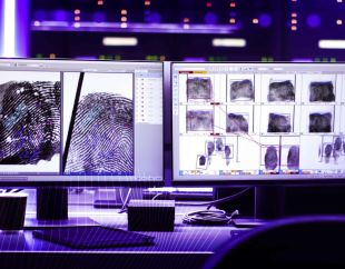 Forensic - <p>-</p>