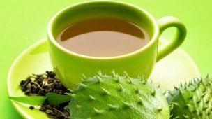 Chá de graviola cura o câncer
