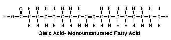 acido-oleico
