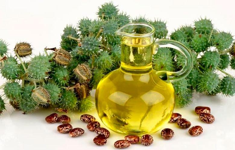 A hidratação com abacate e óleo de rícino, é mais indicada para cabelos cacheados, crespos e afro.