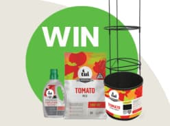 Win a Tomato Planting Pack
