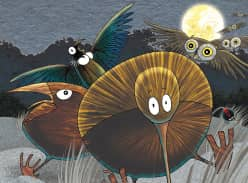 Win The Little Kiwi's Matariki children's picture book