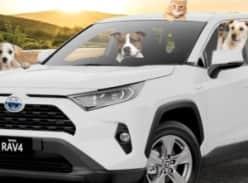 Win a Toyota hybrid SUV