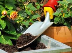 Win an MTD WOLF-Garten Garden Tool Pack