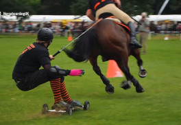 Try Horseboarding—If You Dare