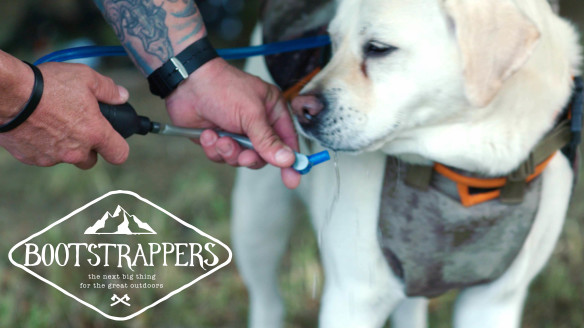 Keep Your Pup Hydrated With the Doggie Camel Pack | Bootstrappers