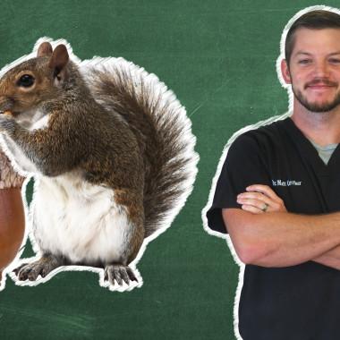 Pet 101: Dr. Matt's Favorite Vet Case