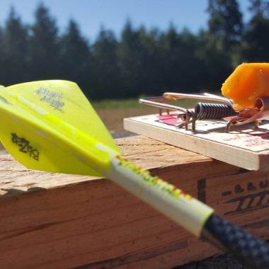 Mouse Trap: Trick Shots with Cam Hanes