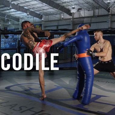 MMA Breakdown: Crocodile Tail