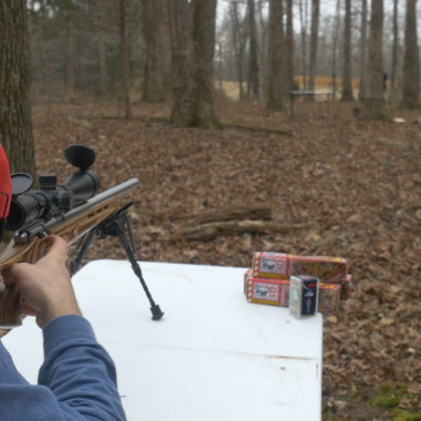 How Many Pieces of Fruitcake Would It Take to Stop the .17 HMR?