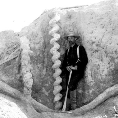 Strange Heartland History: Solving the Mystery of the Devil's Corkscrew