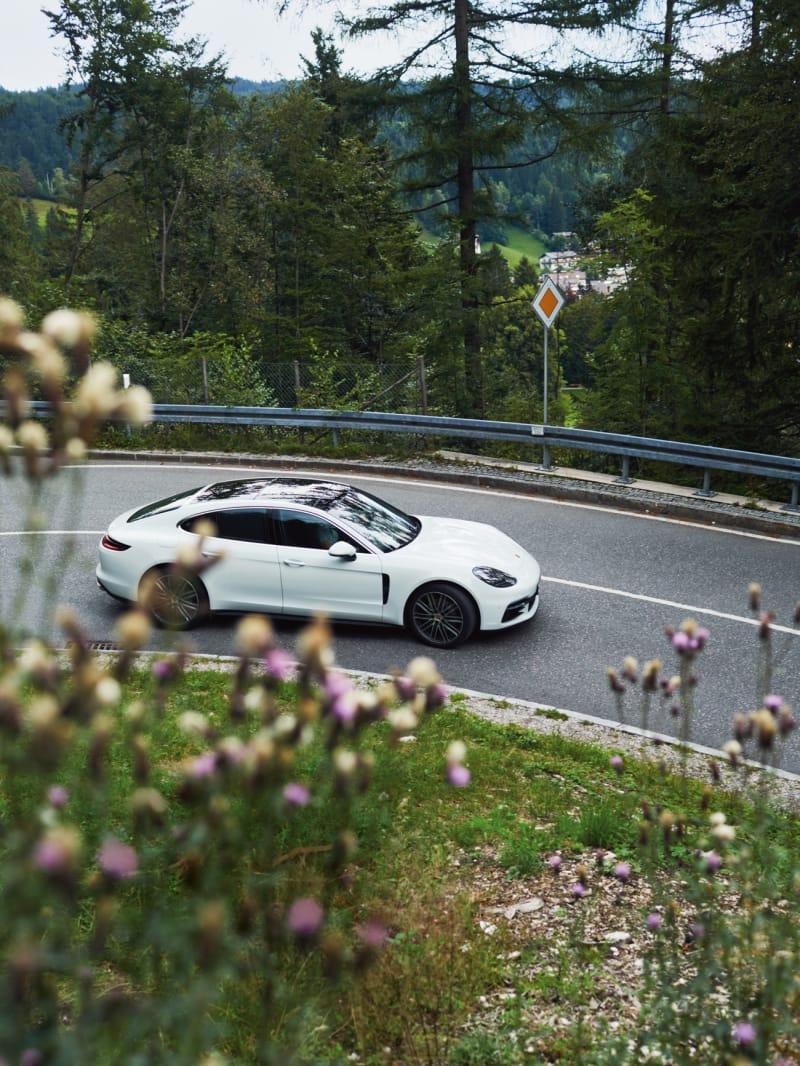 Panorama Porsche D