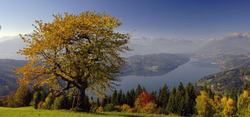 Millstätter See im Herbst