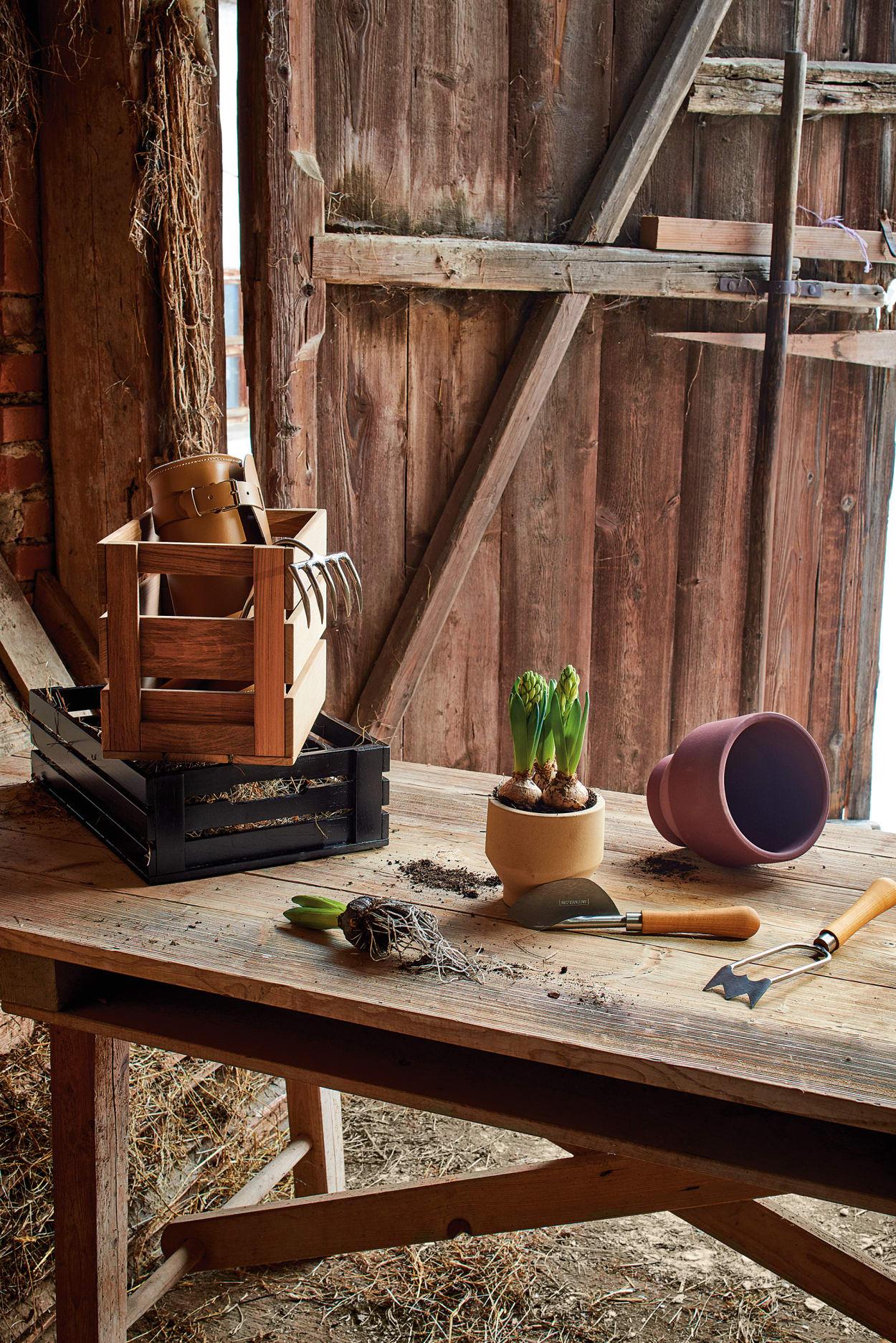 Garten, Landhaus-Stil, Country Living