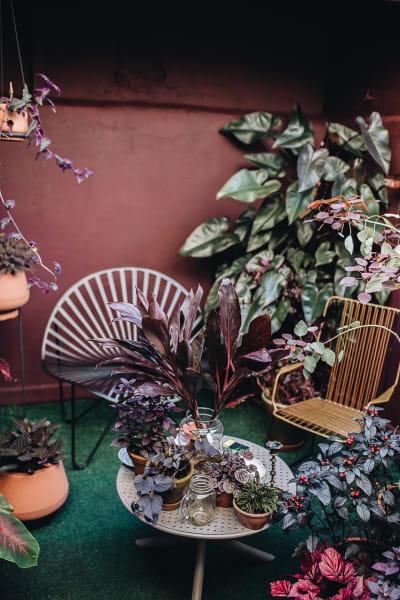 Ein Garten mit Wow-Effekt: Inmitten der verschiedenen Pflanzenarten ist ein ruhiger, fast schon intimer Rückzugsort entstanden.